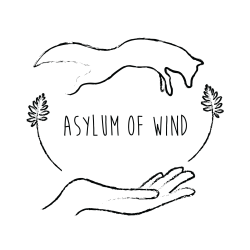 Asylum of Wind